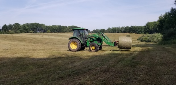 New Hay forSale